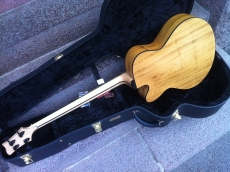 Ribbecke Halfling Bass 2006