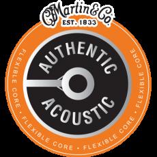Martin Authentic Acoustic Flexible Core