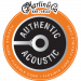 Martin Authentic Acoustic Flexible Core