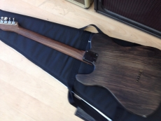 WARMOTH ROSEWOOD TELE 2016 Oulu